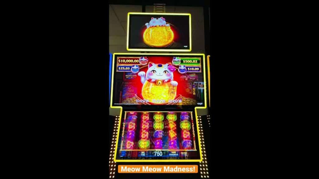 Meow Meow Madness Online Slot